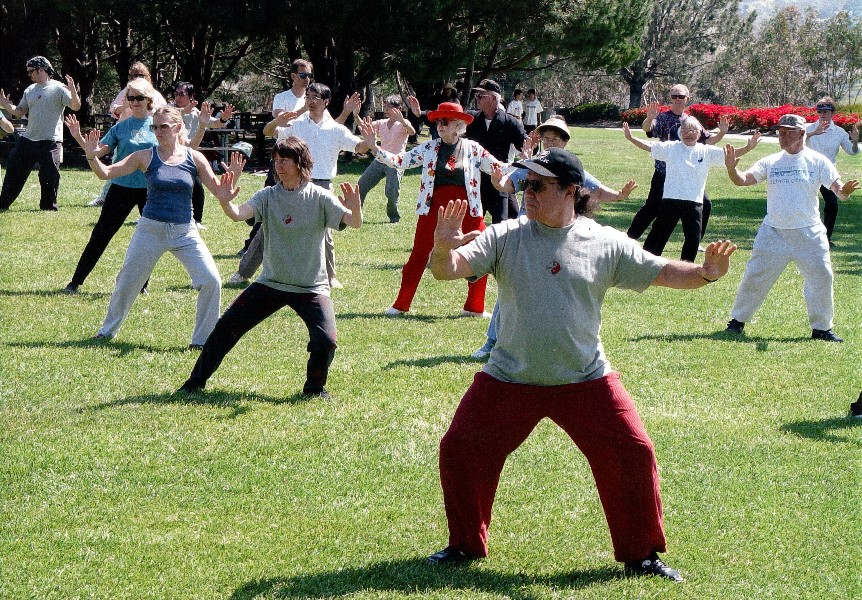 teach yourself how to do tai chi