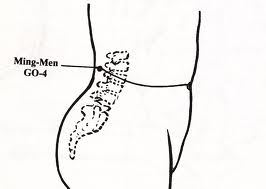 Ming-Men: An acupressure point with power-full implications - Tai